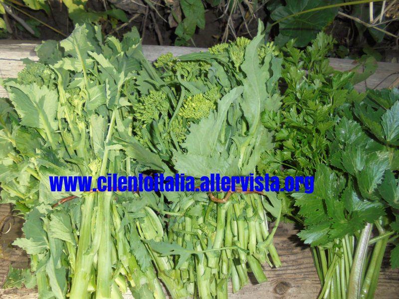 Frittata di broccoli - fasci di cime di rapa (foto Giuseppe Conte)