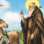 Sant'Antonio Abate nel Cilento fra riti e tradizioni