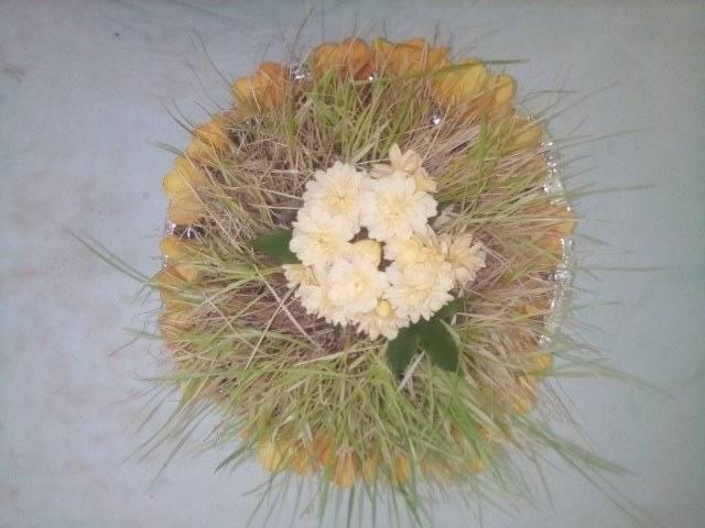germogli di grano preparati per il Giovedì Santo