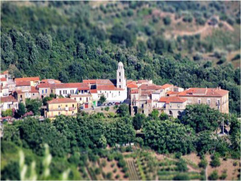 Chiesa di San Martino, Cannicchio